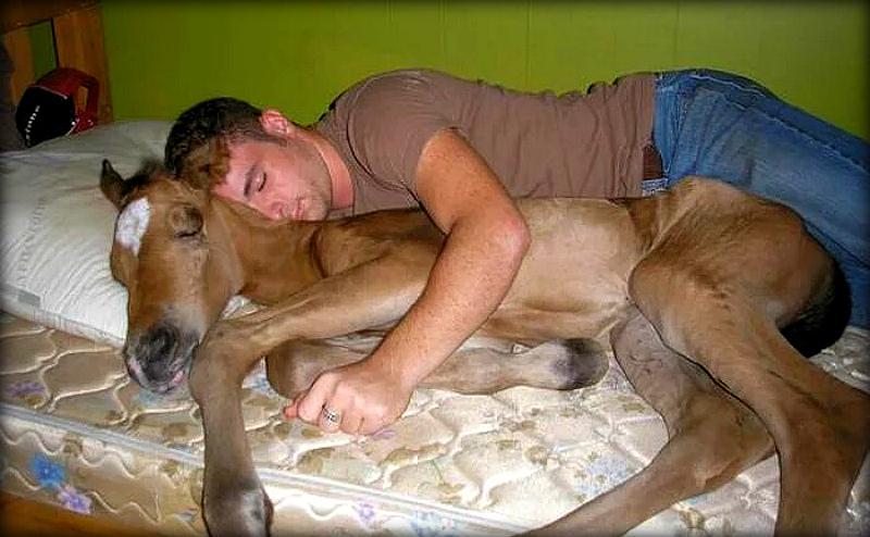 Когда первым уснул на вписке (20 фото)