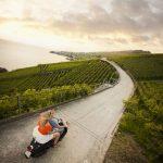 Пара на скутере среди виноградника