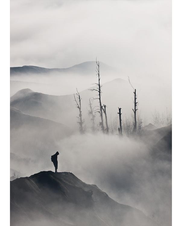 Искусство фотографии: как сделать правильный кадр
