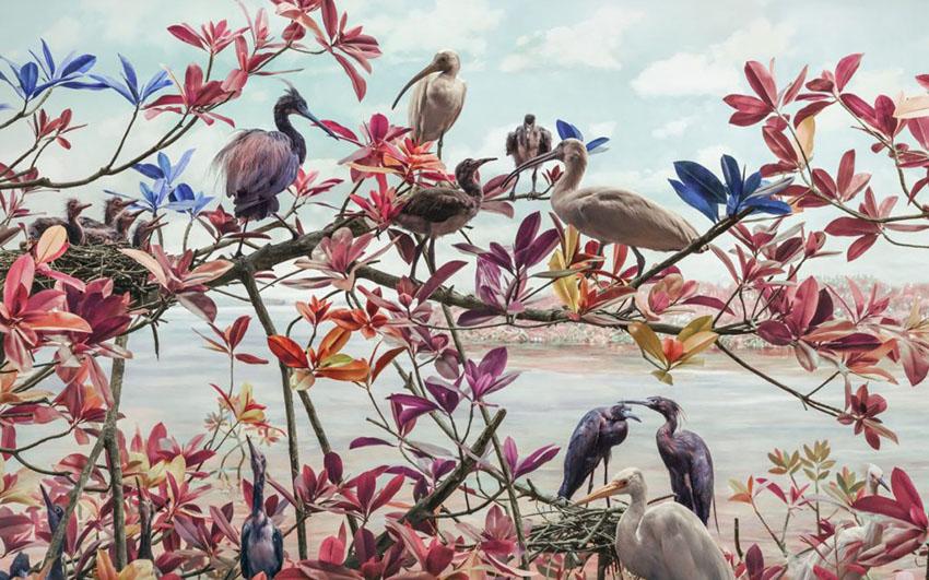 Цифровая дикая природа: мир глазами фотографа Джима Нотена